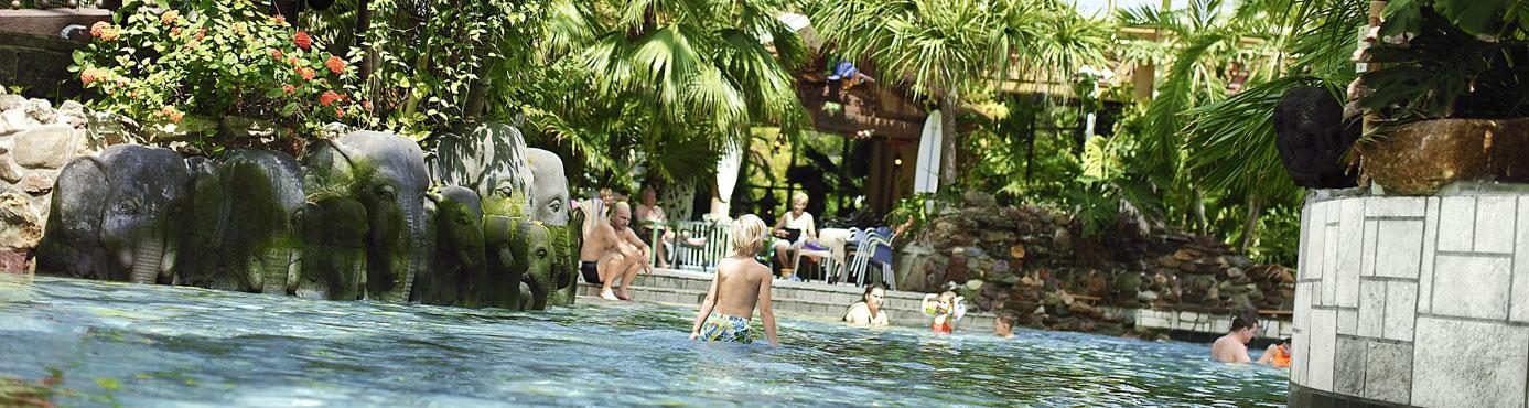 Vakantieparken Met Subtropisch Zwembad Dit Zijn De Leukste