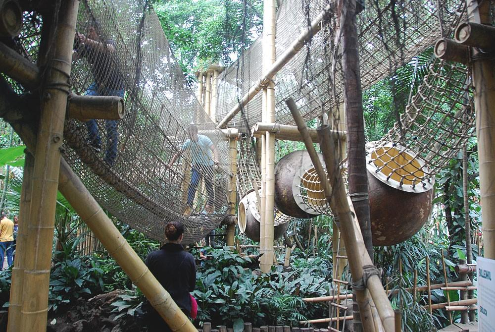 Speeltuin in de Jungle Dome van Center Parcs Het Heijderbos
