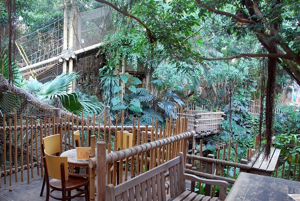 Terras in de Jungle Dome, Center Parcs Het Heijderbos